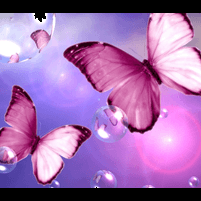 Beautiful purple butterflies flying amongst bubbles